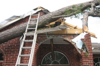 storm-damage-tree-removal-elgin-barrington-il