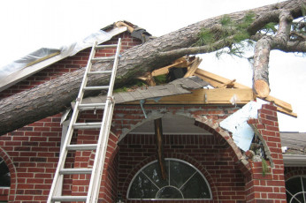 tree-service-storm-damage